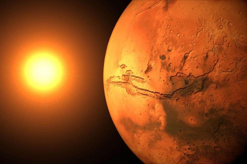 Mars yüzeyinde yaşam belirtisi