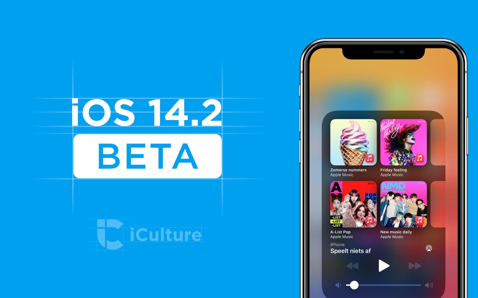 iOS 14.2 güncellemesi