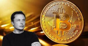 Elon Musk sayesinde milyoner
