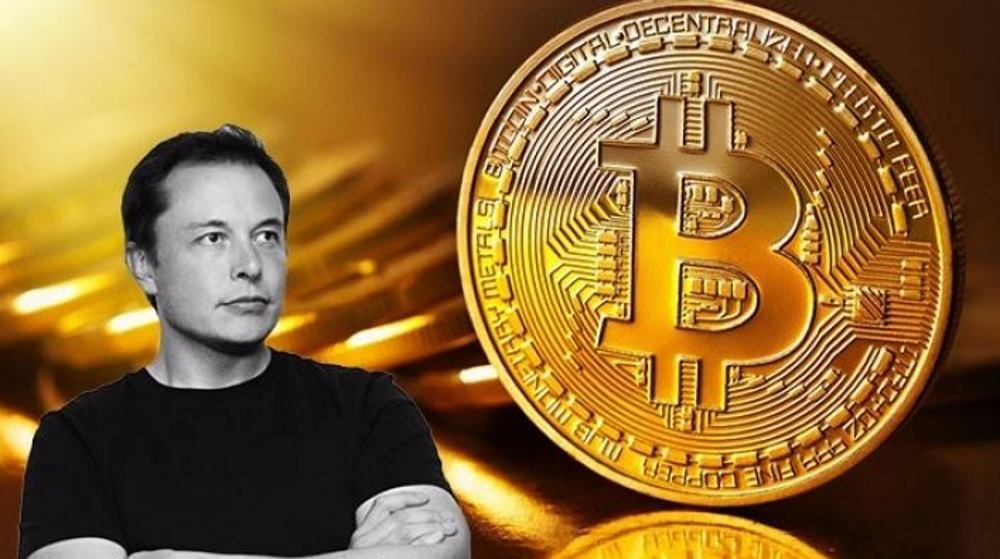 Elon Musk SHIB Coin