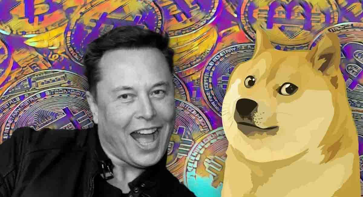 DOGE ve SHIB