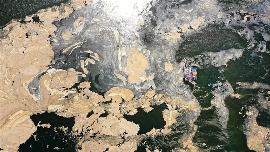 Marmara Denizi müsilaj sorunu