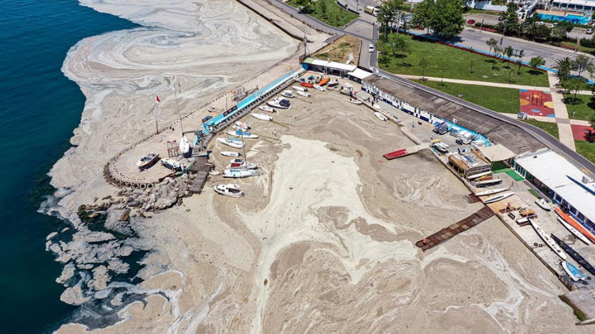 Marmara Denizi'nde müsilaj temizliği